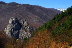 Spring landscape in the mountains of Romania Royalty Free Stock Images