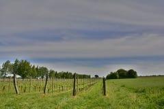 Spring Landscape Near Cividale del Friuli Royalty Free Stock Image