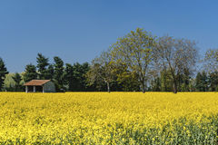 Spring landscape near Groppello Italy Stock Images