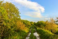 Spring landscape, Novgorod oblast, Russia Royalty Free Stock Images