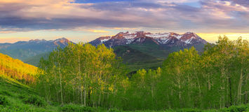 Spring Landscape Panorama From Mill Canyon Peak. Stock Photos