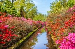 Spring landscape in park Keukenhof, Netherlands Stock Image