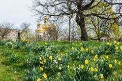 Spring landscape of patterson park with flowers in baltimore mar royalty free stock photos
