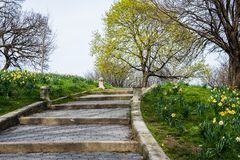 Spring landscape of patterson park with flowers in baltimore mar royalty free stock images
