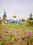 Spring landscape with pink flowers and remote church Stock Photography
