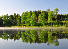 Spring landscape. With pond in Czech Republic Stock Photography