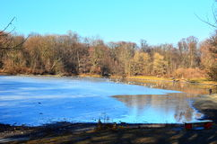 Spring landscape. Pond in the park Skaryszewski, Warsaw Poland Royalty Free Stock Photography