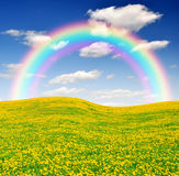 Spring landscape with rainbow. Rainbow above the dandelions field Royalty Free Stock Images