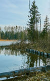 Spring landscape at the reservoir in the Kaluga region in Russia. Stock Photos