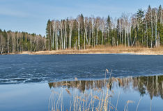 Spring landscape at the reservoir in the Kaluga region in Russia. Stock Images