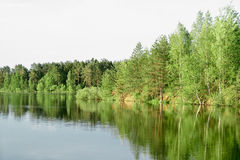 Spring landscape river Stock Photos