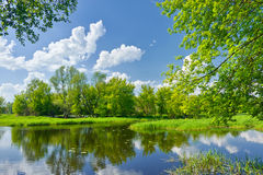 Spring landscape river clouds blue sky green trees
