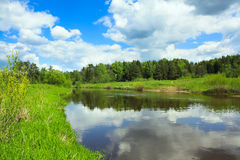 Spring landscape with the river and the forest Royalty Free Stock Photo