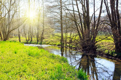 Spring landscape with river and sunshine. Stock Image