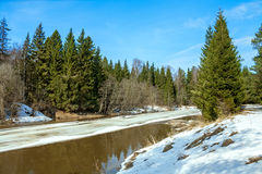 Spring landscape with the river and the wood Royalty Free Stock Photography