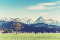 Spring Landscape with a Road royalty free stock photo