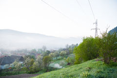 Spring landscape of scenic forest and small village Stock Photography