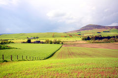 Spring landscape in Scotland Royalty Free Stock Photography