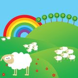 Spring landscape with sheeps Stock Image