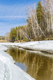 Spring landscape. Siberia, Russia Stock Photography
