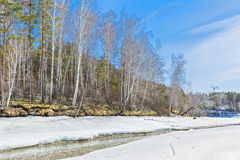 Spring landscape. Siberia, Russia Royalty Free Stock Photos