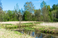 Spring landscape with a small river. Stock Images