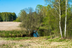 Spring landscape with a small river. Royalty Free Stock Images