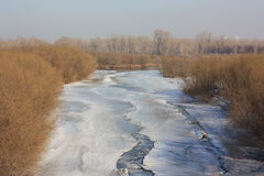 Spring landscape. A small river. The ice is melting. Stock Images
