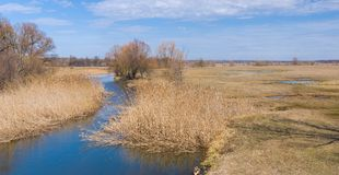 Spring landscape with small river Stock Image
