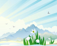 Spring landscape with snowdrops. Illustration of a spring landscape with snowdrops Royalty Free Stock Photo