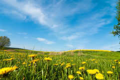 Spring landscape in southern Mecklenburg, Germany, Royalty Free Stock Photography