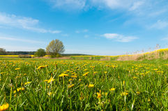 Spring landscape in southern Mecklenburg, Germany, Stock Photos