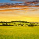 Spring landscape Stock Photography