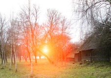 Spring landscape at sunset, old wooden house Royalty Free Stock Image