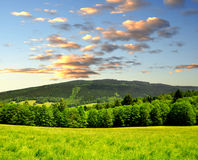 Spring landscape. Sunset over spring landscape in National park Sumava - Czech Republic Royalty Free Stock Image