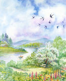 Spring landscape with swallows. Beautiful Stock Image