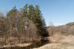 Spring landscape. The trees on the banks of the river and blue sky in spring Royalty Free Stock Photos