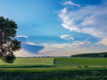 Spring landscape trees cloudy sky path grass green and blue color. Nature Royalty Free Stock Image