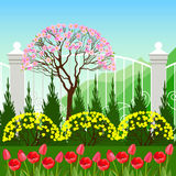Spring landscape with tulip flowers. Royalty Free Stock Photo