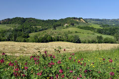 Spring landscape. Tuscany, Italy Stock Photo