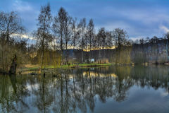 Spring landscape, the water level in front of trees Stock Images