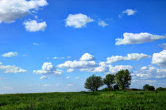 Spring landscape. With white clouds, blue sky and green grass Stock Photo