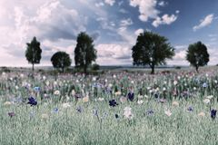 Spring Landscape with Wild Flowers stock photo