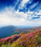 Spring Landscape With The Cloudy Sky And Colors Royalty Free Stock Image