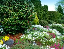 Spring Landscaping. Garden landscaped with colorful shrubs Royalty Free Stock Photos
