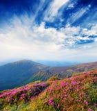 Spring landschap met de bewolkte hemel en de kleuren op royalty-vrije stock afbeelding