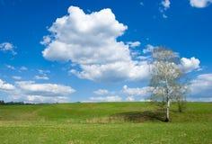 Spring landschap op Royalty-vrije Stock Foto's