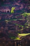 Spring lane gansu china Stock Photography