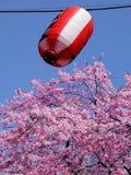 Spring lantaarn op royalty-vrije stock foto
