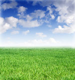 Spring Lawn And Beautiful Blue Sky Royalty Free Stock Image